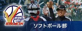 bannre_softball